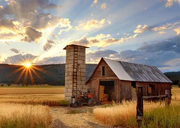 Agriculture-LP